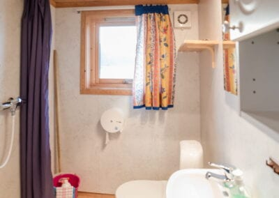 Bathroom with toilet, shower, sink, mirror and window.